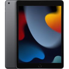 Apple iPad 10.2 Wi-Fi + Cellular 9th Gen 256GB Space Gray MK4E3