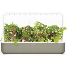 Click & Grow Smart Garden 9, bēšs